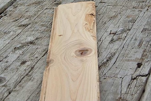 Discount Cedar Pic- Purpose Page- after 2nd text box